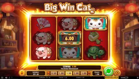 Big Win Cat – Gewinne werden bis zu x10 multipliziert!