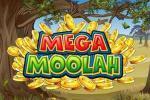 Mega Moolah Spiele Test